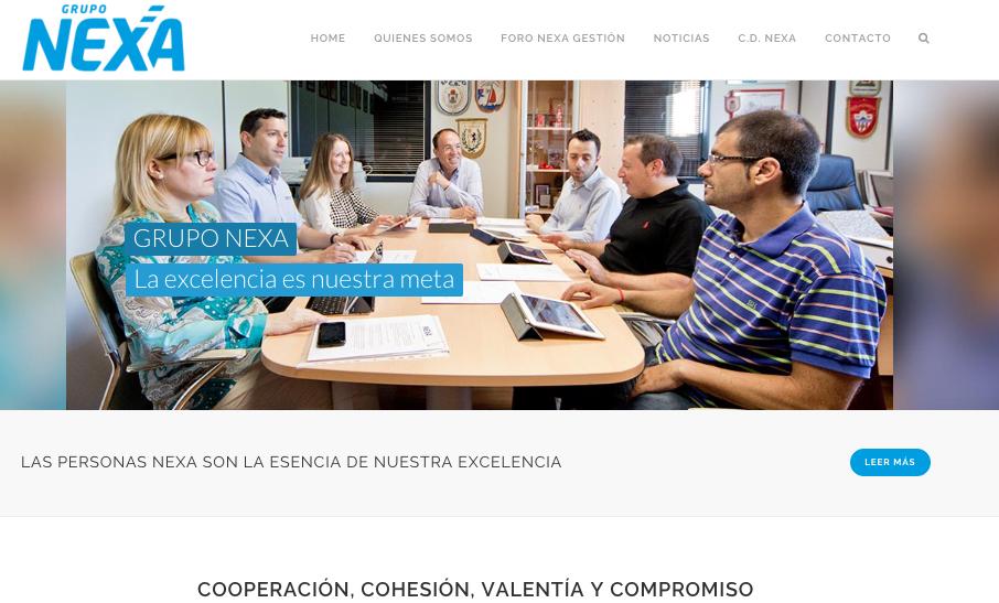 Diseño web Grupo Nexa