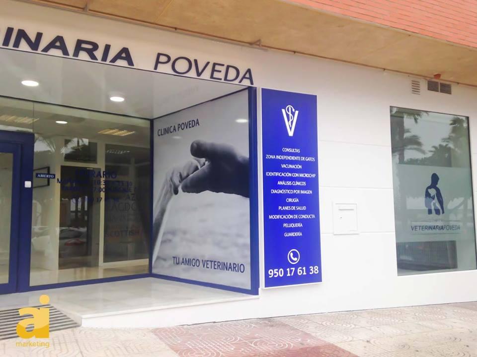 Clinica veterinaria poveda dise o gr fico - Proyecto clinica veterinaria ...
